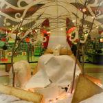 all_giardino polare